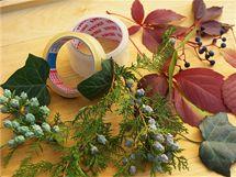 Na dekoraci mísy si připravte živý rostlinný materiál, na zafixování misek k sobě pevnou izolepu.