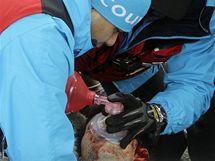 L�ka�i o�ivuj� Nodara Kumarita�viliho po nehod� na olympijsk� dr�ze ve Whistleru.
