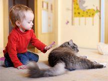 Kvůli příchodu potomka se nemusíte vzdávat rodinného mazlíčka. Časem se sžijí.