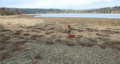 Napouštění brněnské přehrady, břehy porostlé trávou mizí ve vodě .