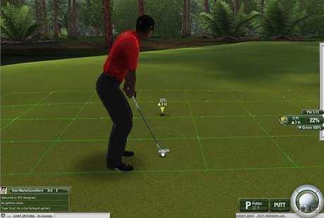 Patování v Tiger Woods Online