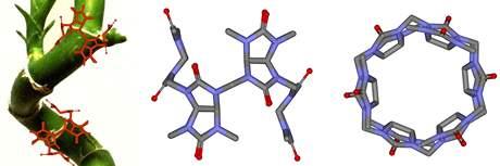 Novou sloučeninu objevili vědci z Brna, pomoci by mohla ve farmacii, zdravotnictví i v potravinářském průmyslu