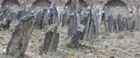 Náhrobky pocházející až z roku 1552 uvidí návštěvníci ivančického hřbitova