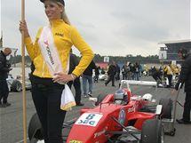 Formule 3, Suzuki