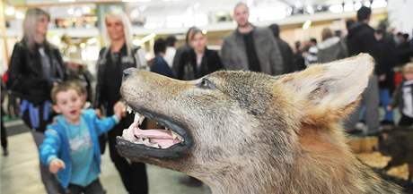 Desátý ročník veterinárního veletrhu Animal Vetex, jedenáctý lesnický a myslivecký veletrh Silva Regina a veletrh zemědělské techniky Techagro v Brně
