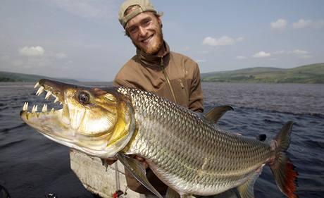 Tyg�� ryba z Konga