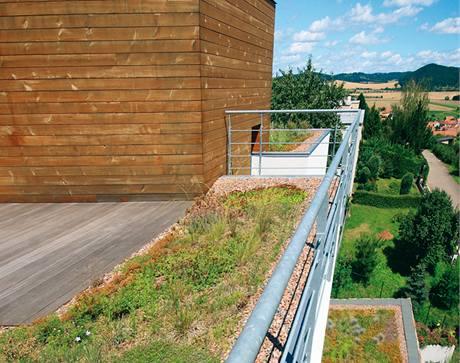 Zeleň okolo domu rozšiřují i zelené střechy. Zeleň je vysázena i na zastřešení teras.