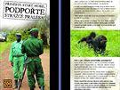 Nejv�t��mu poddruhu goril, �ij�c�mu v Kongu, hroz� �pln� vyhuben�. Pomoc str�c�m jejich rezervac� i z�chrann�ch stanic vybaven�m technikou i zbran�mi je proto nezbytn�.