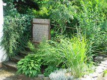 Ekozahradníci preferují divoká zákoutí před pravidelnými záhony.