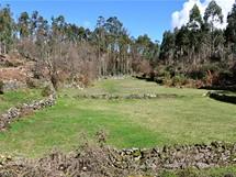 Severní Portugalsko. Mýtina veukalyptovém lese u osady Paradela