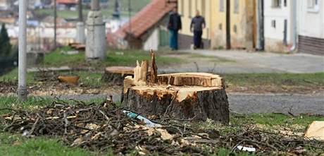 Z Břeclavské ulice ve Valticích zmizely vzrostlé stromy, ještě letos se tam mají vysadit nové