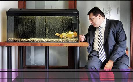 Paroubkovy rybičky - původní snímek