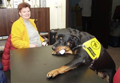 Paní Jana, kardiačka, se svojí psí zachránkyní a asistentkou Deizy.