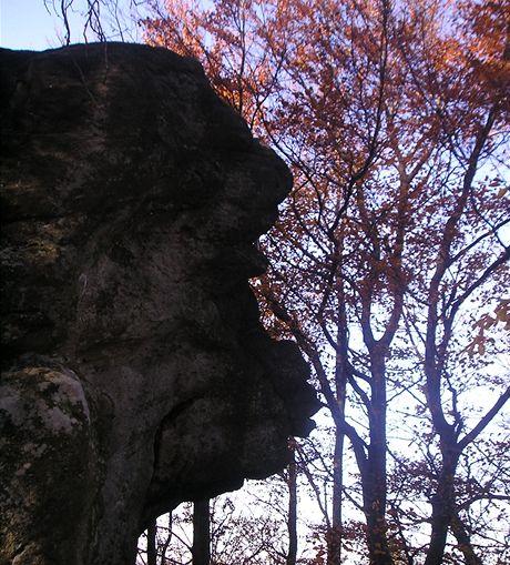 Opičí skalní hlava na vrchu Smrdutá
