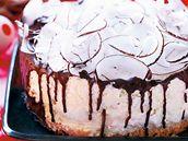 Kokosový dort s čokoládovou polevou