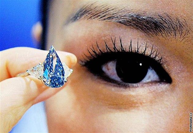 V auk�ní síni Sotheby's byl vydra�en vzácný modrý diamant.