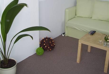 Šikovná čtenářka si sama ušila gauč a lampičku upletla z březových větviček