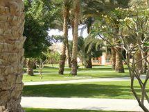 Dovolená v Egyptě - krásné prostředí v hotelovém komplexu je samozřejmostí