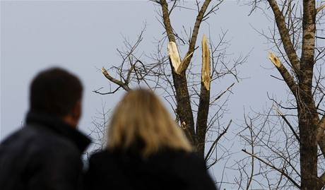 Místo havárie Tupolevu TU-154M u ruského Smolenska. V letadle zahynuly polské politické špičky včetně prezidenta Kaczynského. (13.dubna 2010)