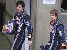 Zklamaní jezdci stáje Red Bull Mark Webber (vlevo) a Sebastian Vettel.