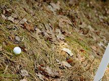 Seriál o golfových pravidlech - míč v autu.