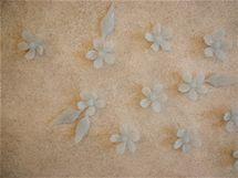 Zeď zdobí skleněná tapeta