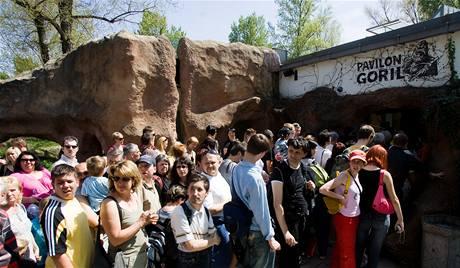 Davy lidí čekají na prohlídku pavilonu opic