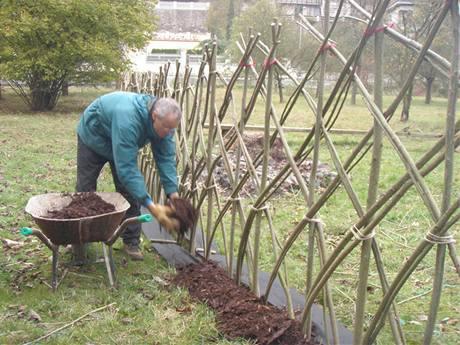 Založit živý plot z čerstvých vrbových prutů také není složité.