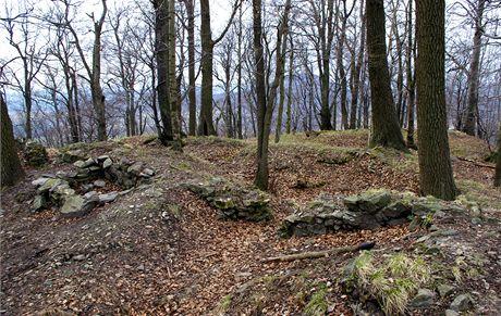 Zbytky hradu Starý Falkenburk