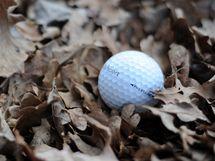 Seriál o golfových pravidlech - míč a volné přírodní předměty.