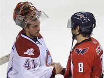 Brankář Montrealu Jaroslav Halák a Alexandr Ovečkin, tahoun Washingtonu.