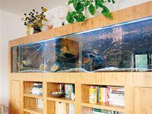 Na obklad akvária byl použit stejný materiál jako na podlahu – bambus