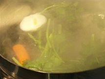 Na humra si připravte bylinkový vývar.