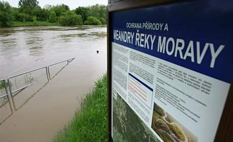 Rozvodněná Morava v Rohatci na Hodonínsku.