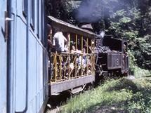 Rumunsko, Maramureš, lesní železnice