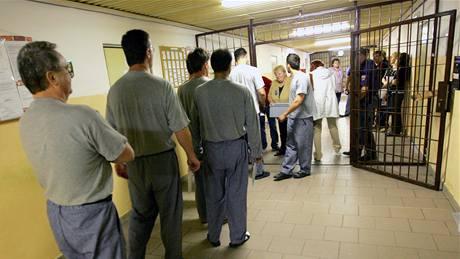 Volby proběhly i ve věznici v Rapoticích. (28. května 2010)