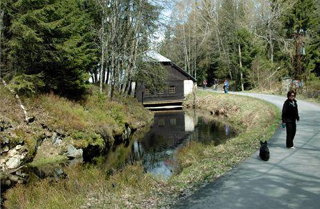Šumava, podél Vchynicko-tetovského kanálu