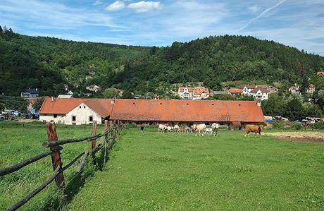 Cyklovýlet na Karlštejn. Údolí Švarcovy a Solopisky