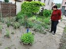 Slavkov u Brna - Věra Pitronová, majitelka zatopeného domu v Tyršově ulici (26. května 2010)