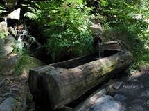 Čistá šumavská voda v dřevěném korytě, tady se můžete bez obav napít