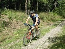 Cyklovýlet na Karlštejn. Hezké dubové háje jsou typickým obrázkem cyklistiky v CHKO Český kras