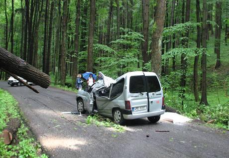 Mezi Drozdovem na Šumpersku a Zábřehem spadl dub na auto. Řidič byl vážně zraněný, spolujezdkyně nehodu nepřežila. (31. května 2010)