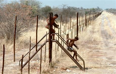 Plot na hranici mezi Botswanou a Zimbabwe.