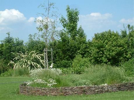 V bílé zahradě vás obklopuje paleta živých zelených tónů od šedozelené po lahvovou, doplněná o odstíny bílé.