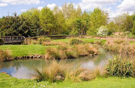 London Wetland Centre. Malé vodní hladiny jsou rájem nejen pro vodní ptactvo, ale také pro obojživelníky. Jako nenápadné ohrady tu působí nízké kamenné zídky.