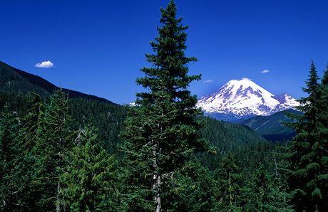 USA, Mount Rainier