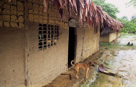 Amazonie, vesnice indiánů Yanomami