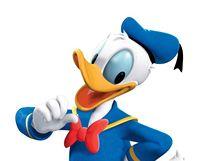 Ka�er Donald
