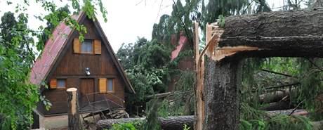 Kalamita po sobotní bouři na jižní Moravě (14. červen 2010)