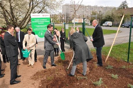 Stromy pro lepší životní prostředí